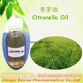 Manufacturer supply natural pure Citronella oil for repeling mosquito 1