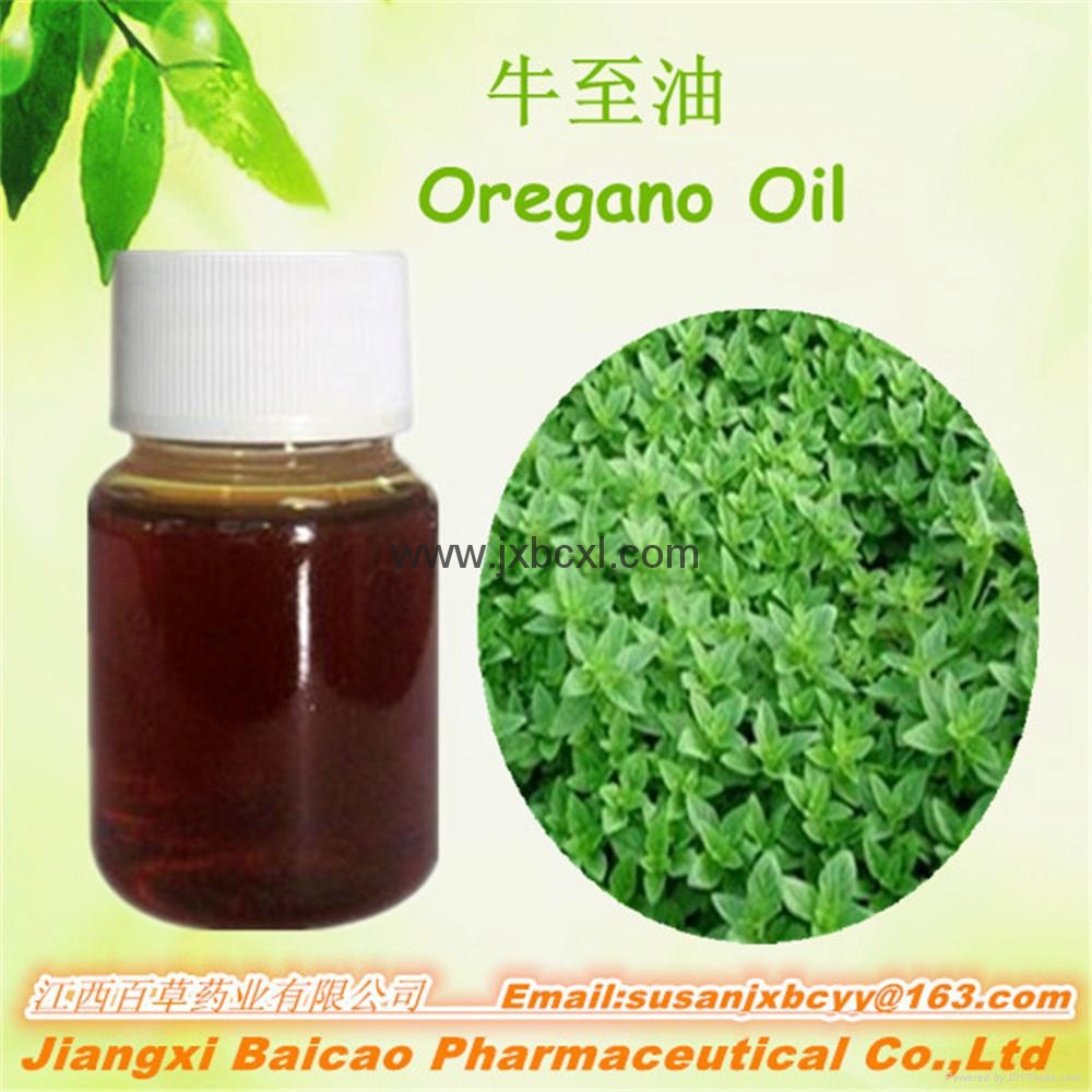 Oregano oil with Carvacrol for Feed additives 4