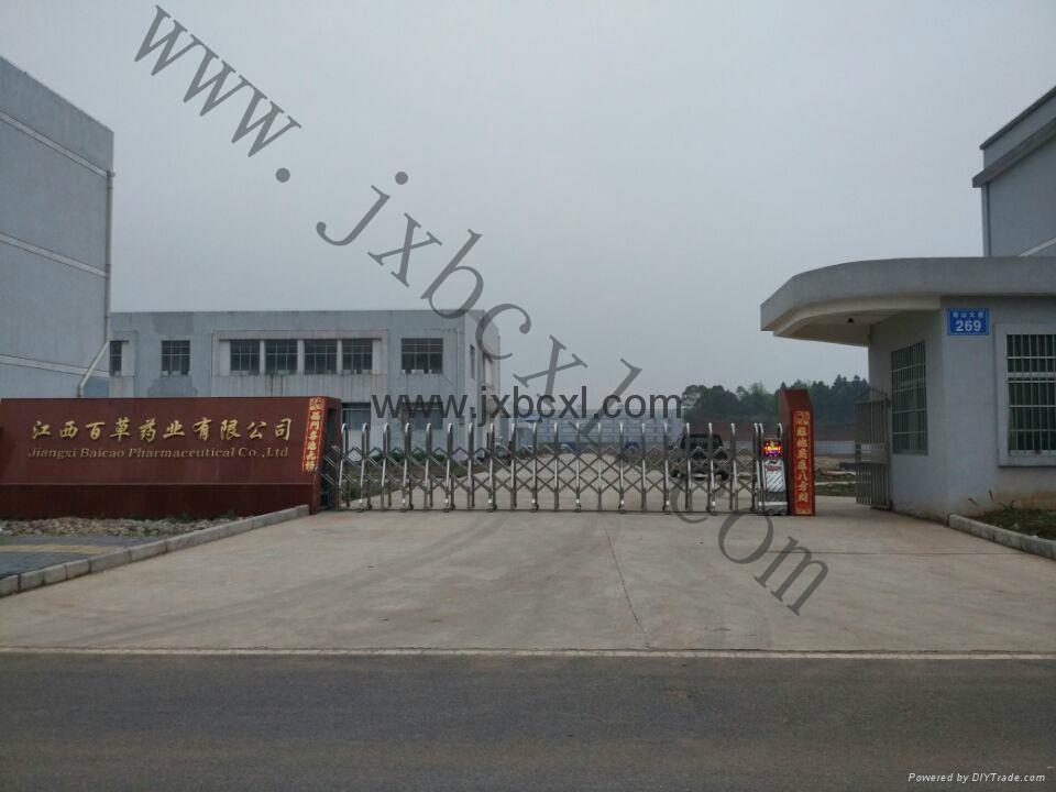 GMP 廠家專業生產天然八角茴香油 4
