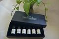 熱銷植物精油套裝 10ml禮盒 4