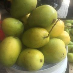 Vietnamese mango fruit