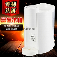 Heated Hydrogenated Water Heater Water Heater
