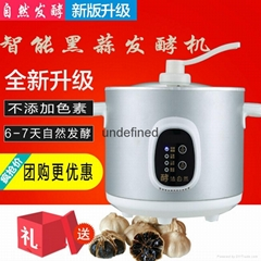 Home black garlic fermentation machine health black garlic machine