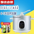 Home black garlic fermentation machine health black garlic machine 4