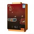 前排電熱水器天然氣液化氣電熱水器恆溫定時 5