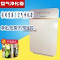 外貿空氣淨化器除甲醛負離子淨化器 4