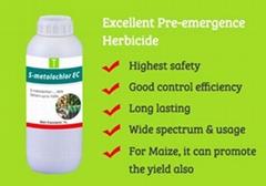 S-Metolachlor 96% EC
