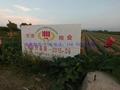 瓷磚壁畫 陶瓷標示牌廠家 哪有做陶瓷標示牌的   3