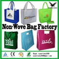 2017 New Design Strong Die Cut Non Woven Bags 4