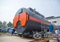 1吨燃气蒸汽锅炉 3