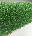 synthetic turf 2
