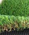 landscape grass 3