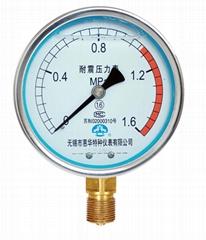 耐震壓力表 抗震壓力表 防震壓力表 充油壓力表