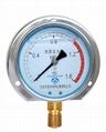 耐震壓力表 抗震壓力表 防震壓力表 充油壓力表 3
