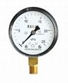 膜盒壓力表 普通膜盒壓力表 微壓表 5