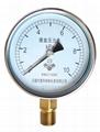 膜盒壓力表 普通膜盒壓力表 微壓表 1