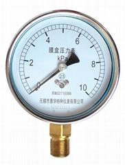 膜盒壓力表 普通膜盒壓力表 微壓表