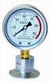 卫生型隔膜压力表 卡箍式/螺母式/矩形法兰式隔膜压力表