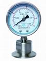 卫生型隔膜压力表 卡箍式/螺母