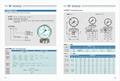 膜片壓力表 不鏽鋼膜片壓力表 2