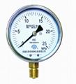 氫氣壓力表 氫氣表
