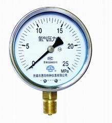 氢气压力表 氢气表