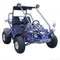 2Seats 150cc Hammerhead Gas Dune B   y off Road Go Kart 2