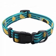 Custom dog collars: Popu