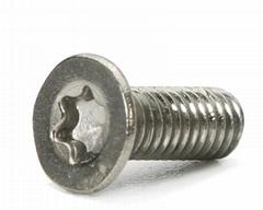 316不鏽鋼微型馬達螺絲