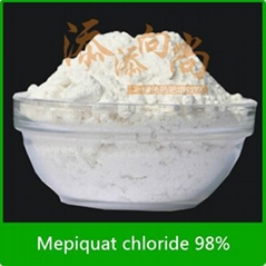 Plant growth regulator Mepiquat chloride 97%TC