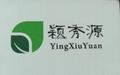 YXY-983有機硅消泡劑