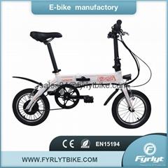 14'' Folding Electric Bike