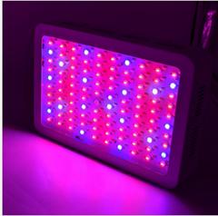 300W Led grow light full spectrum for medical plants