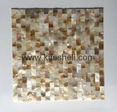 15*30mm varied Freshwater Shell Mosaic Tiles