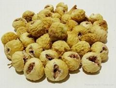 Dried Fig 101A