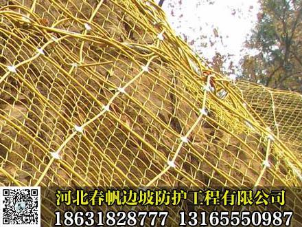 销售边坡防护网 2