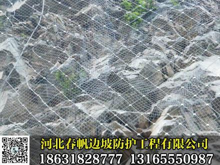 销售边坡防护网 4