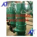 WQ防爆排污泵安全稳定易使用 2