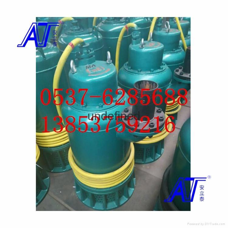 WQ防爆排污泵安全稳定易使用 3