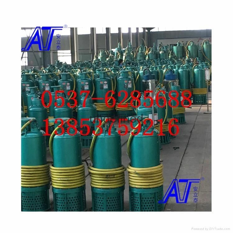 WQ立式防爆排污泵 5