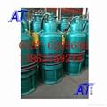 WQ防爆泵性能稳定库存数量多 5