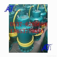 防爆污水泵防爆证件齐全价格优惠