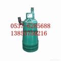 潜水式排污泵 1
