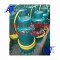 WQB防爆潜水泵铸铁材质 4
