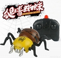 moving animal rc toys spider remote control for kids simulation toys wall climb