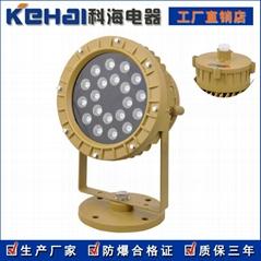 LED防爆投光燈50W