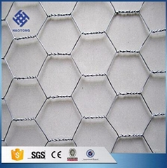 30 Years' factory supply hexagonal wire