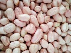 White skin peanut kernels