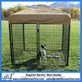 Hot sale new design outdoor best-selling cheap dog kennels 4
