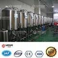100L发酵罐